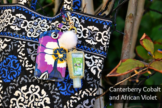 Canterberry cobaltafrican2210094